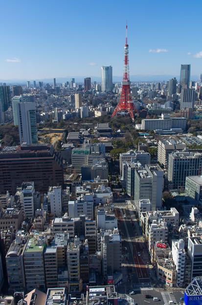 東京タワーと六本木方面