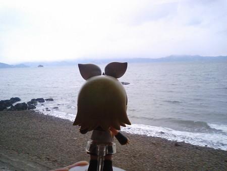 たのうら御立岬公園→上田浦間。 リン:「うみうみうみ海海ー!! ...