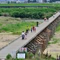 Photos: 2014_0706_105053_八幡の流れ橋