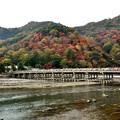 Photos: 2014_1124_100537_渡月橋