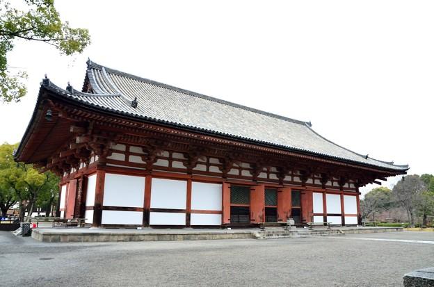 2015_0222_121126_東寺講堂