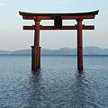 Photos: 白髭神社 湖に浮かぶ鳥居_02