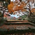 Photos: 晩秋 ~高岡古城公園~