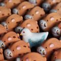 写真: 亥の中の鳩