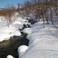 写真: 雪中の川