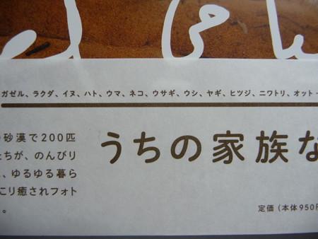 砂漠のわが家 (5)
