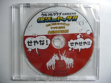 141216-ウルフルズ  復活のヤッサ Blu-ray (4)