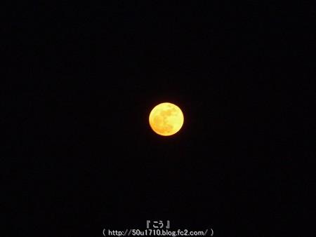150105-お月さん (12)
