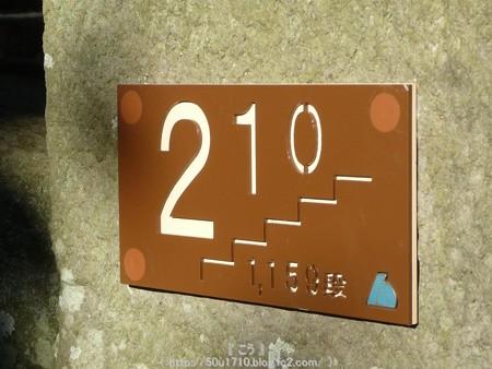 150108-久能山東照宮 参道 (21)
