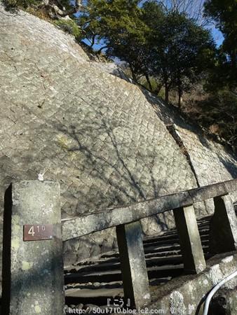 150108-久能山東照宮 参道 (31)