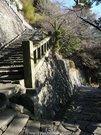 150108-久能山東照宮 参道 (39)