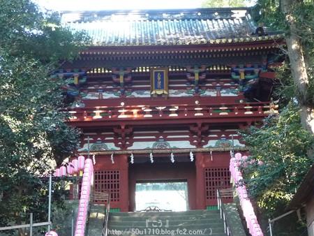 150109-久能山東照宮 (12)