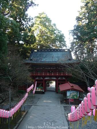 150109-久能山東照宮 (26)