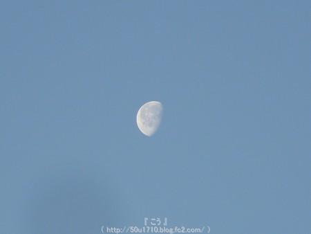 150210-お月さん (1)
