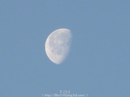 150210-お月さん (2)