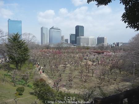 140308-大阪城梅林 (127)