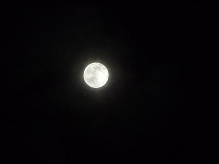 101023-お月さん (11)