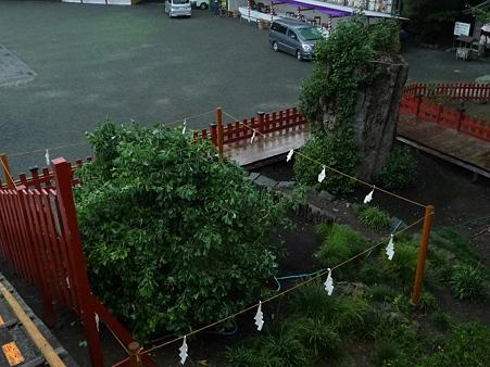 101026-八幡さま (11)