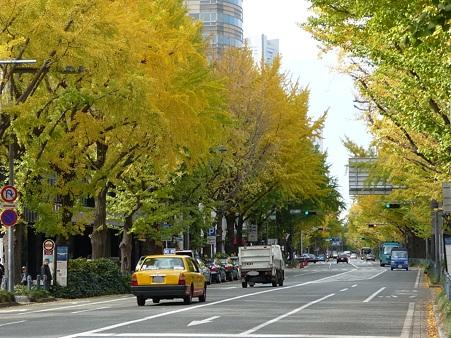 101119-紅葉 山下公園通り (46)