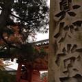Photos: 真如堂