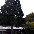 北近畿タンゴ鉄道、但馬三江駅