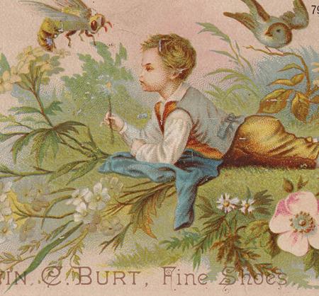 クロモスカード,小鳥 ハチ 花 少年,拡大