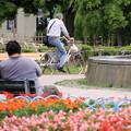 写真: 平和公園・昼下がり01-12.07.09
