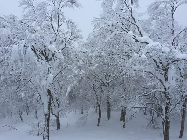 1月_蔵王温泉 7