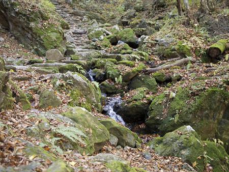 岩と水と苔の道