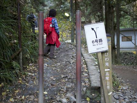 琵琶滝方面分岐点