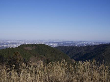 城山山頂から東京市街を望む