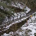 Photos: 雪の稲荷山コース入口
