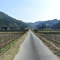 Photos: こうち滝への道 (1)