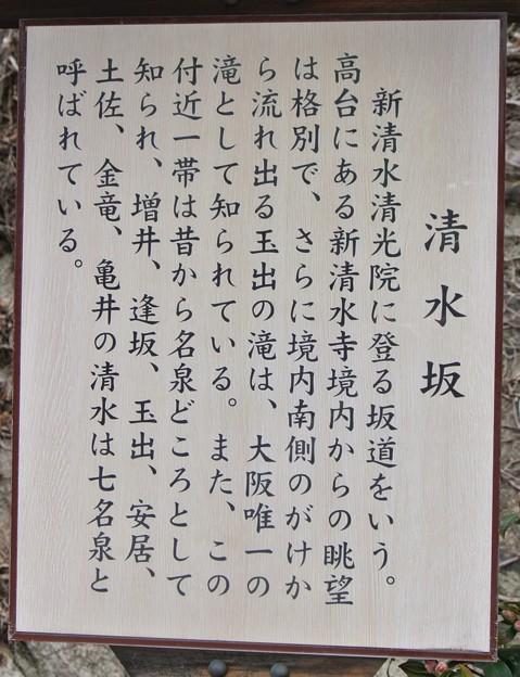 清水坂 (2)