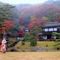 Photos: 綺麗な花嫁さん