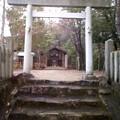 Photos: 初詣一発目。若宮八幡木附神...