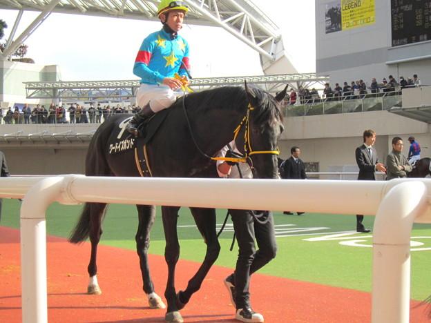 ワードイズボンドと戸崎圭太騎手