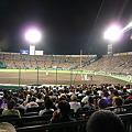 Photos: 100909a