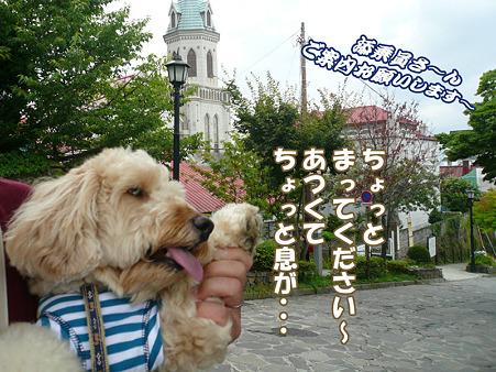 函館散歩 元町 2