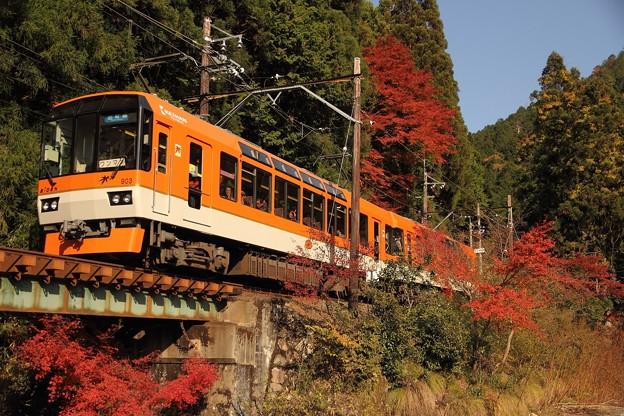 叡山電鉄「きらら」メイプルオレンジ