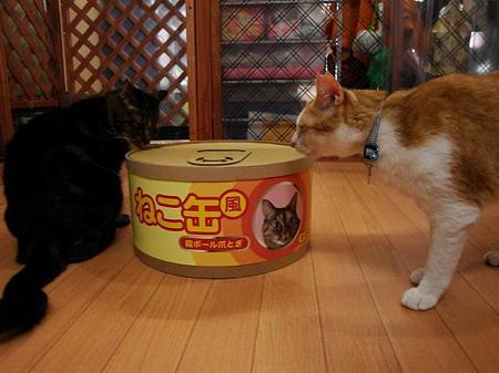 ゴロ「ぼく、食べきれるかなぁ?」