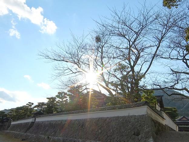 五十鈴川3