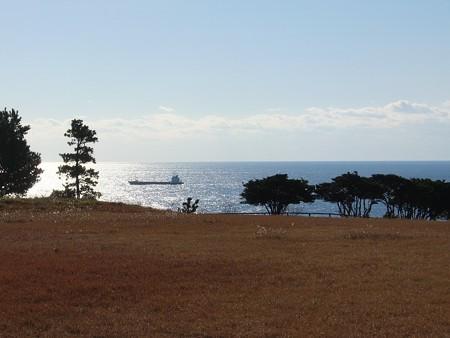 潮岬10 望楼の芝生