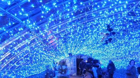 長居植物園ガーデンイルミネーション14 満天の星