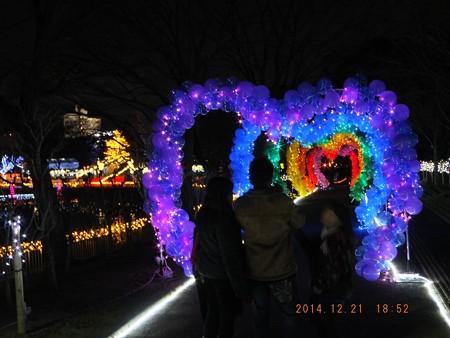 長居植物園ガーデンイルミネーション20