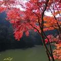 紅く染まる湖畔