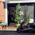 Photos: cafeとbikeとTシャツの影
