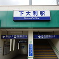 Photos: 下大利駅(仮設)