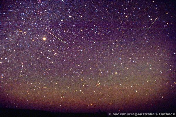 獅子座流星群(その2)