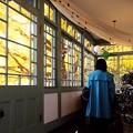 Photos: 2014.12.09 山手 ブラフ18番館 銀杏